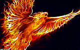 Click image for larger version  Name:Fractal_Phoenix_by_aceman67.jpg Views:101 Size:1.02 MB ID:75332