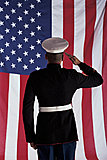 Click image for larger version  Name:salute-flag.jpg Views:9 Size:147.6 KB ID:58074