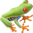 Name:  frog.png