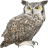 Name:  owl.png